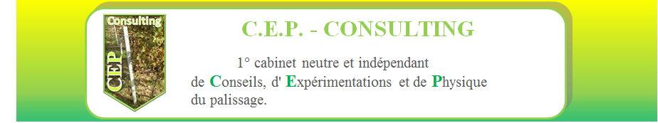 cep-consulting.fr